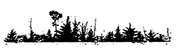bosco-croara-foresta-skyline-rivalta-trebbia