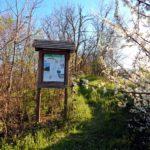 Percorso Picchio, Parco Fluviale del Trebbia